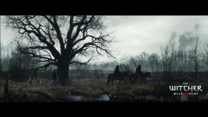 The Witcher 3 : Wild Hunt Wallpaper 10