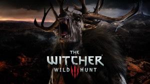 The Witcher 3 : Wild Hunt Wallpaper 7