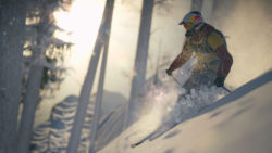 PRO-RIDER_FOREST_FREERIDE